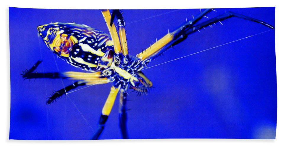 Spider Bath Sheet featuring the digital art Banana Spider by Kendall Tabor