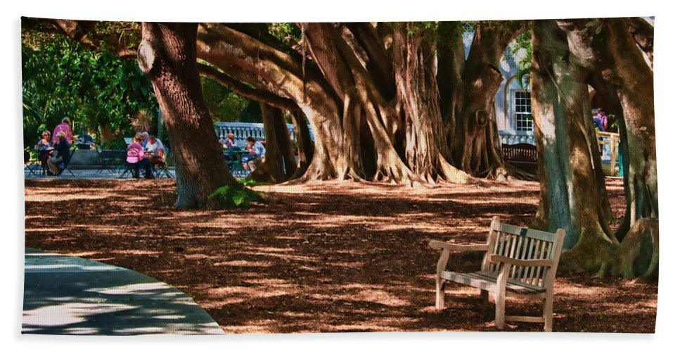 Banyan Hand Towel featuring the photograph Banyans - Marie Selby Botanical Gardens by Mitch Spence