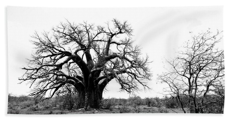 Baobab Bath Sheet featuring the photograph Baobab Landscape by Bruce J Robinson