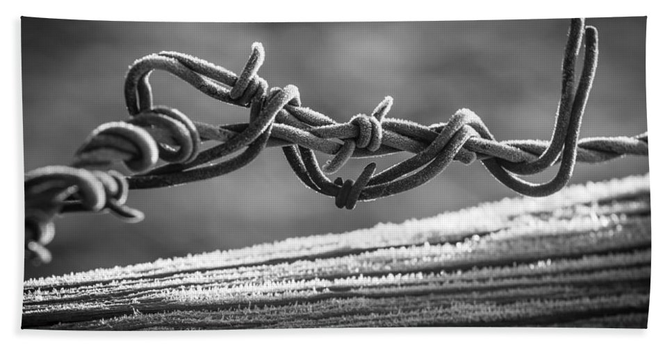 America Hand Towel featuring the photograph Barbed Wire by Inge Johnsson