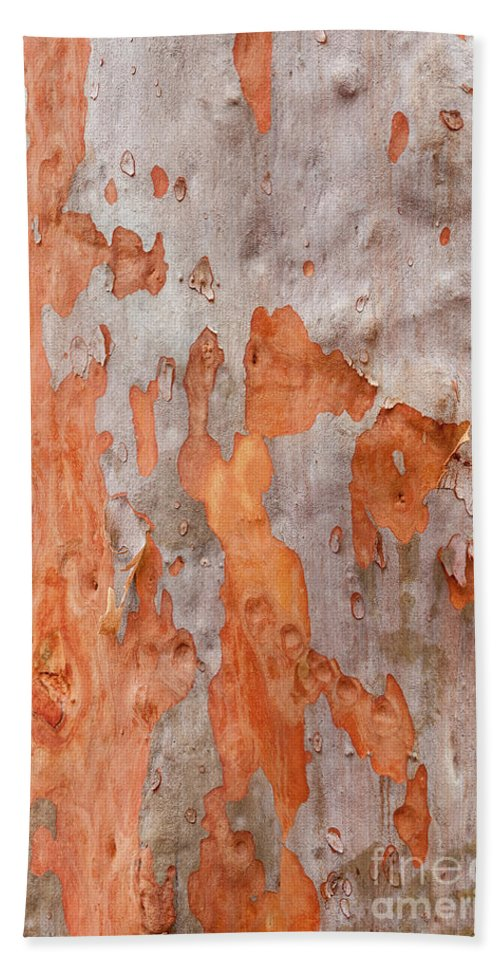 Ku-ring-gai Chase Hand Towel featuring the photograph Bark Kc04 by Werner Padarin