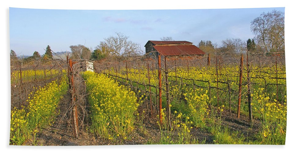 Mustard Hand Towel featuring the photograph Barn Among The Wild Mustard by Tom Reynen