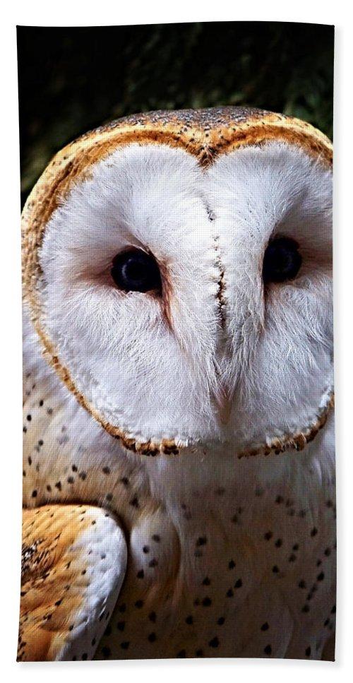 Barn Owl Bath Towel featuring the photograph Barn Owl by Anthony Jones
