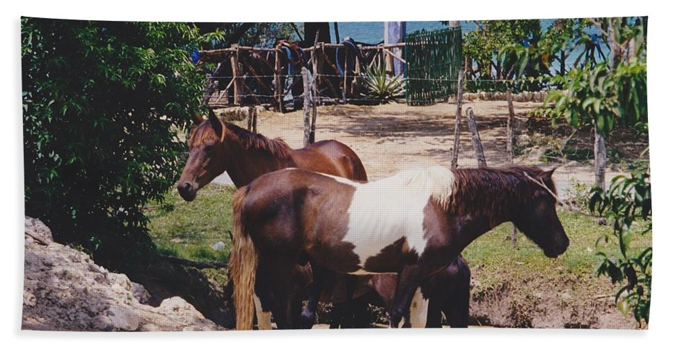Horses Hand Towel featuring the photograph Beach Horses by Michelle Powell