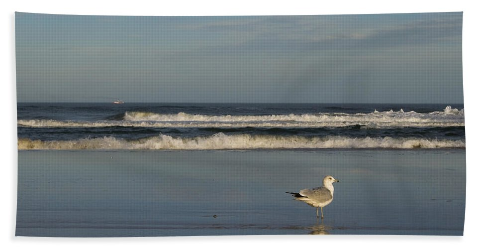 Sea Ocean Gull Bird Beach Reflection Water Wave Sky Hand Towel featuring the photograph Beach Patrol by Andrei Shliakhau
