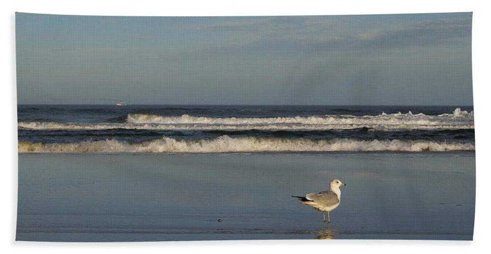 Sea Ocean Gull Bird Beach Reflection Water Wave Sky Bath Towel featuring the photograph Beach Patrol by Andrei Shliakhau