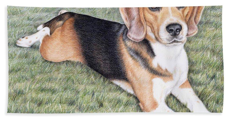 Dog Bath Towel featuring the drawing Beagle by Nicole Zeug