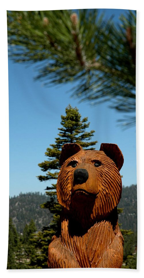 Usa Bath Sheet featuring the photograph Bear by LeeAnn McLaneGoetz McLaneGoetzStudioLLCcom