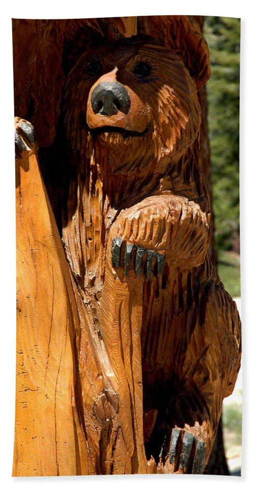 Usa Hand Towel featuring the photograph Bear On Trail by LeeAnn McLaneGoetz McLaneGoetzStudioLLCcom