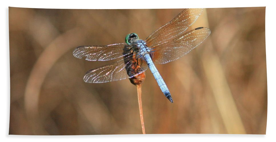 Dragonfly Hand Towel featuring the photograph Beautiful Broken Wing by Carol Groenen