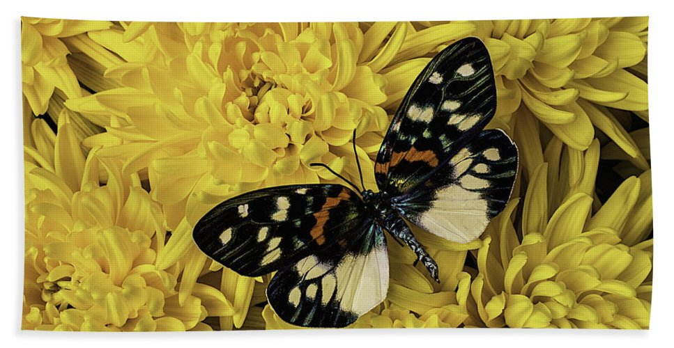Mum Hand Towel featuring the photograph Beautiful Wings On Yellow Mums by Garry Gay