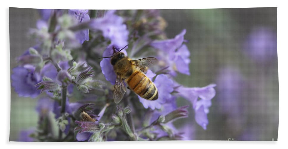 Flowers Bath Sheet featuring the photograph Beauty And The Bee by Deborah Benoit