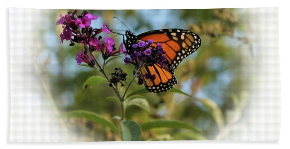 Butterfly Hand Towel featuring the photograph Beauty In God's Handiwork 2 by Robin Ayers