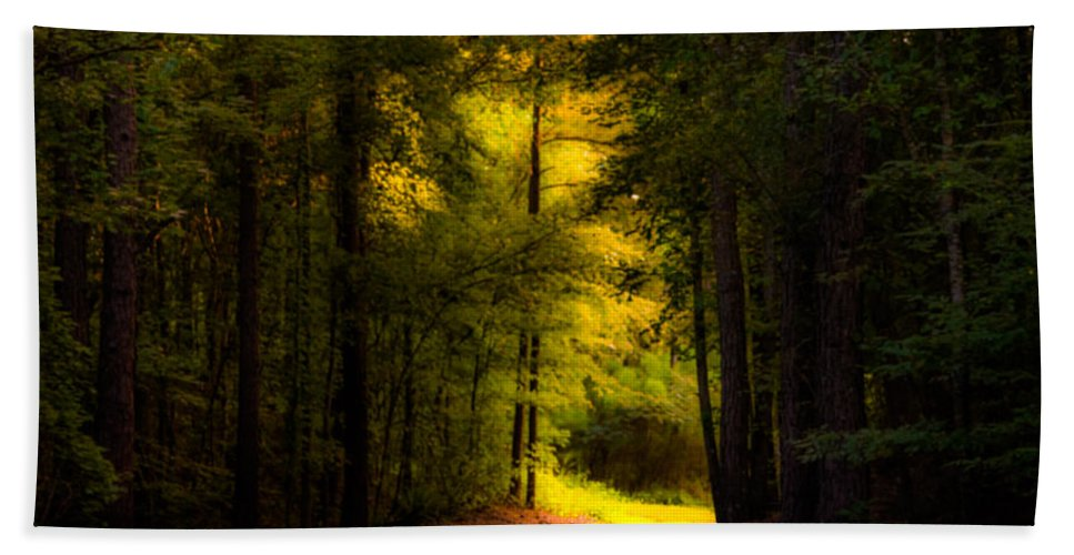 Path Hand Towel featuring the photograph Beauty In The Forest by Parker Cunningham