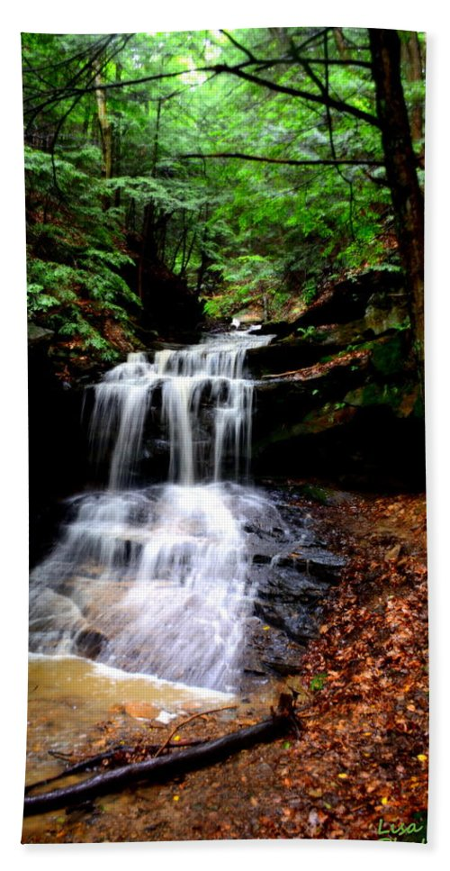 Mcconnells Mills State Park Pa Hand Towel featuring the photograph Beauty In The Woods by Lisa Wooten