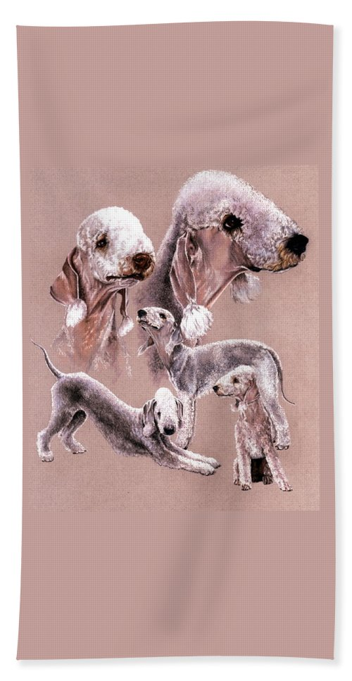 Dog Bath Towel featuring the drawing Bedlington Terrier by Barbara Keith