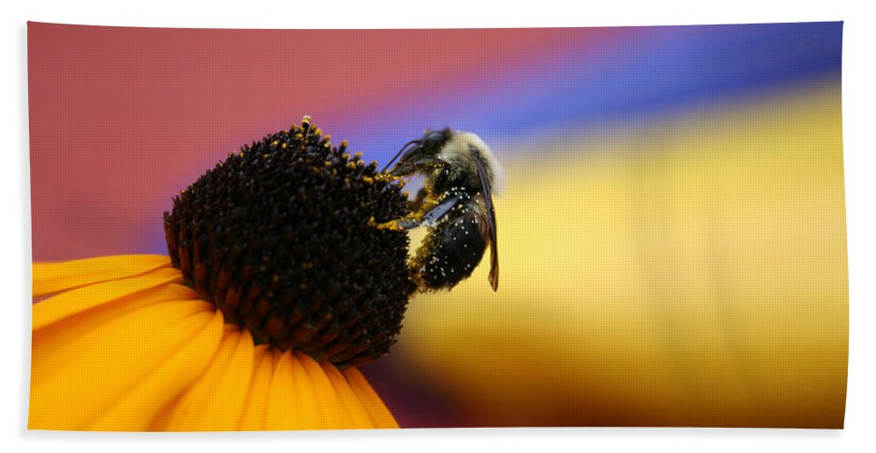 Insects Bath Sheet featuring the photograph Bee All You Can Bee by Linda Sannuti