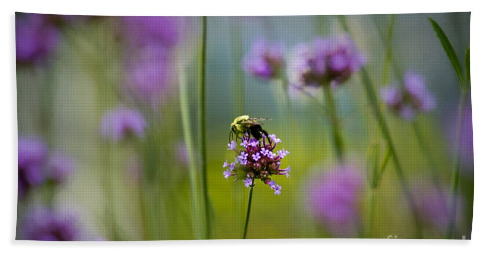 Bumble Bee Hand Towel featuring the photograph Bee by David Arment