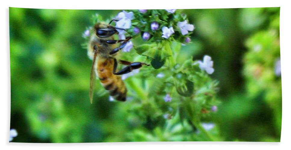 Photograph Bath Sheet featuring the photograph Bee Is In The Oregano by MaryLee Parker