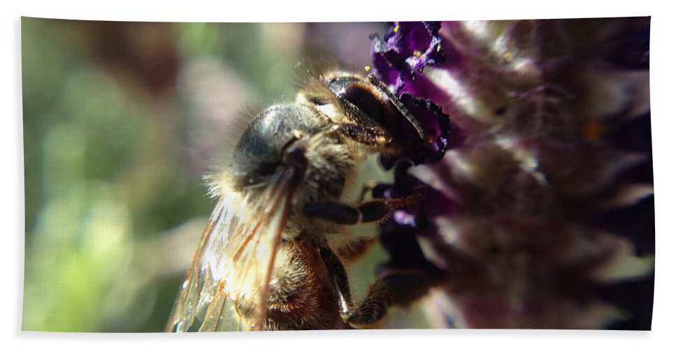 Bee Hand Towel featuring the photograph Bee Mine by Michelle Ngaire