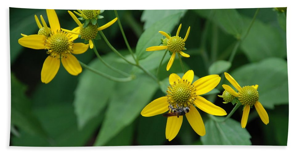 Macro Bath Sheet featuring the photograph Bee On A Flower by Rob Hans
