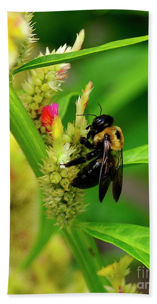 Nature Bath Towel featuring the photograph Bee On Flower by Susan Cliett