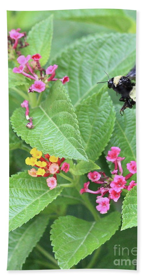 Bee Bath Towel featuring the photograph Beeing Amongst The Flowers by Carol Groenen