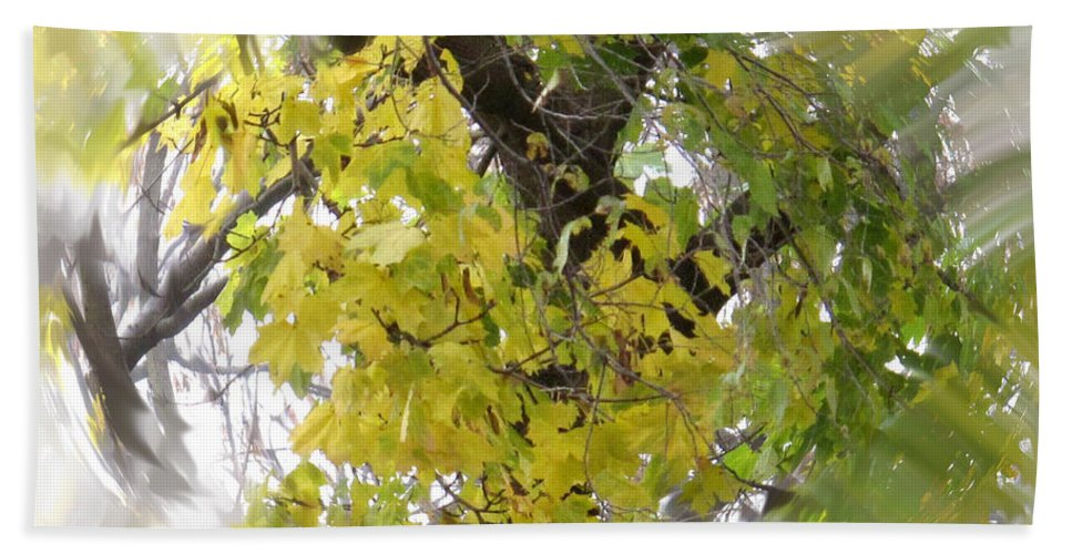 Abstract Hand Towel featuring the photograph Before All The Leaves Fell by Ian MacDonald