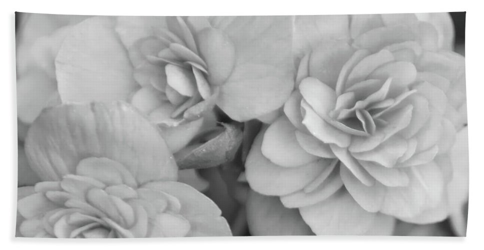 Begonia Hand Towel featuring the photograph Begonias In Black And White by Olga Hamilton