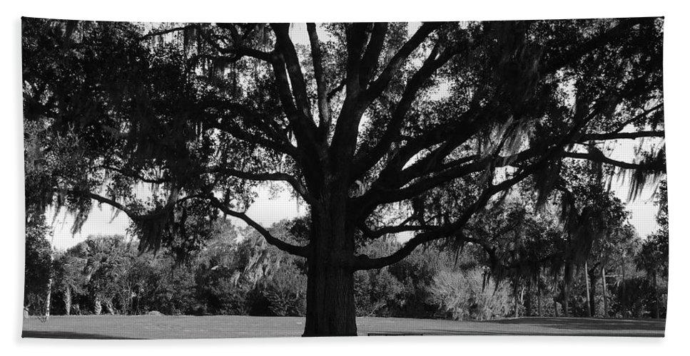 Park Bench Bath Sheet featuring the photograph Bench Under Oak by David Lee Thompson
