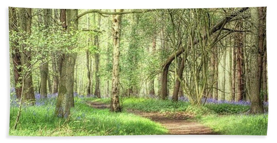 Nature Bath Towel featuring the photograph Bentley Woods, Warwickshire #landscape by John Edwards