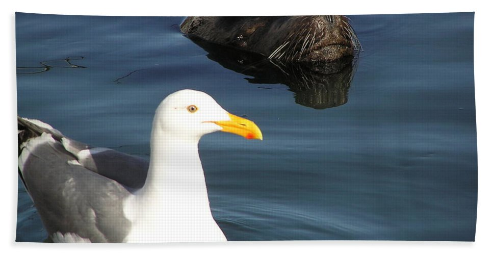 Seagull Hand Towel featuring the photograph Best Friends by Louise Magno