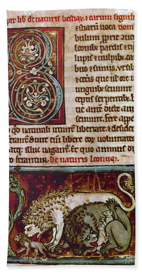 12th Century Bath Sheet featuring the photograph Bestiary: Lion by Granger