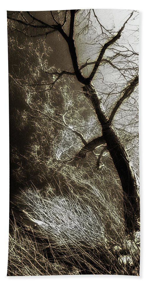 Tree Hand Towel featuring the photograph Beyond The Eyes by Jon Delorme