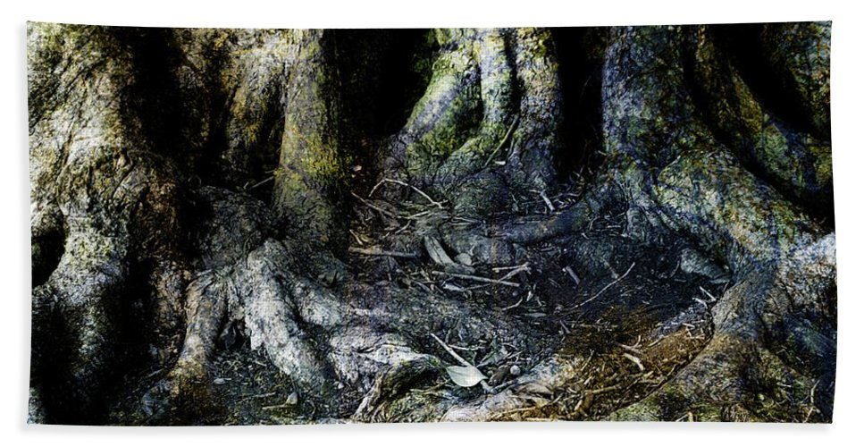 Tree Bath Towel featuring the photograph Beyond The Forest Edge by Kelly Jade King