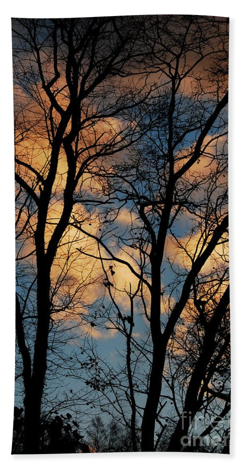 Landscape Hand Towel featuring the photograph Beyond The Trees by Lori Tambakis