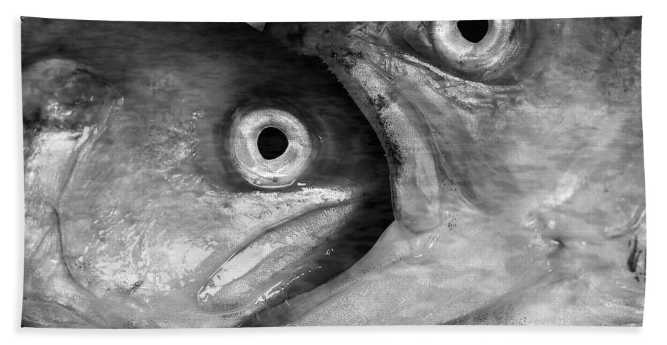 Fish Bath Sheet featuring the photograph Big Fish Eat Small Fish by Michal Boubin