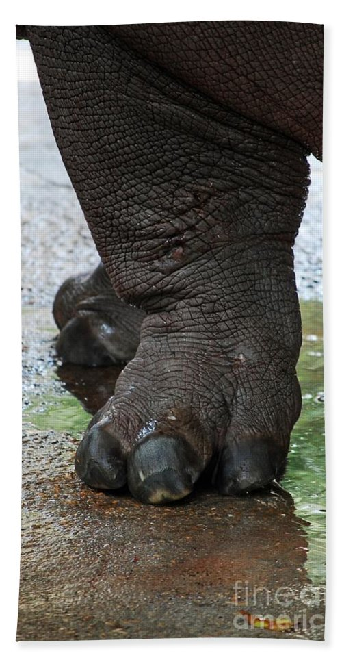Big Foot Bath Sheet featuring the photograph Big Foot by Robert Meanor