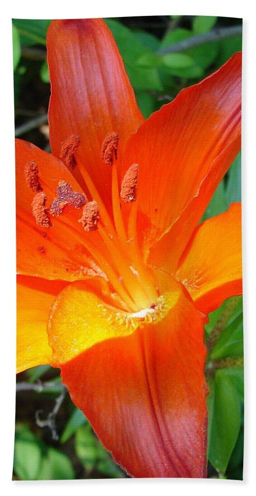 Orange Flower Yellow Bath Towel featuring the photograph Big Orange by Luciana Seymour