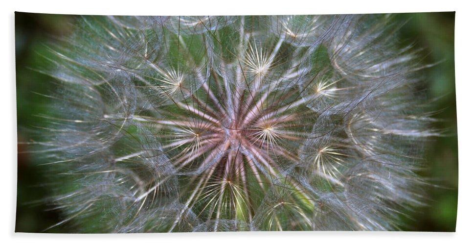Dandelion Bath Towel featuring the photograph Big Wish by Linda Sannuti