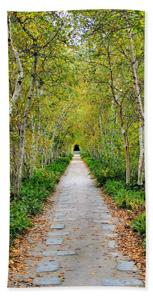 Pathway Hand Towel featuring the photograph Birch Pathway Perspective by Kristin Elmquist