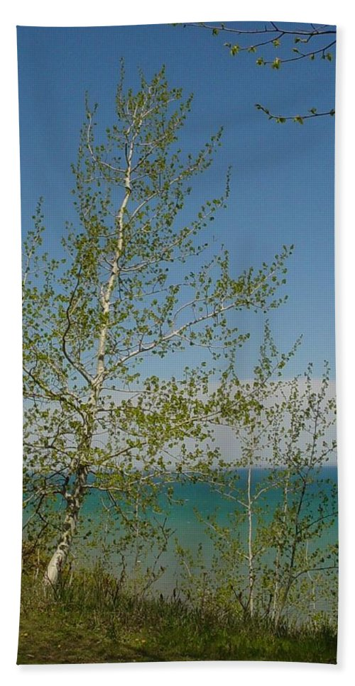 Birch Tree Bath Sheet featuring the photograph Birch Tree Over Lake by Anita Burgermeister