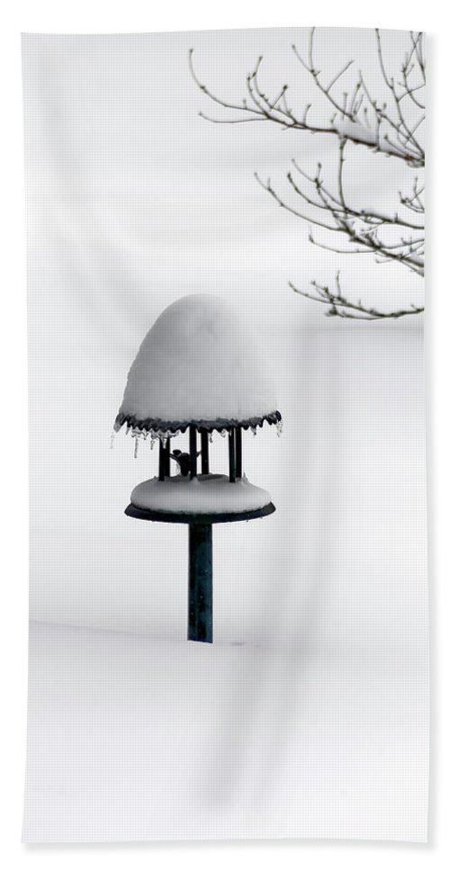 Bird Feeder In Snow Hand Towel featuring the photograph Bird Feeder In Snow by Greg Reed