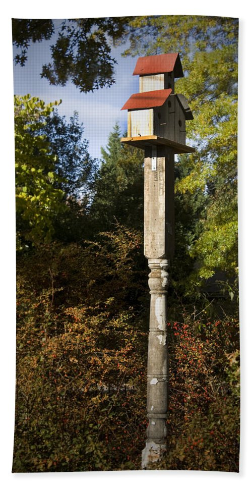 Fall Hand Towel featuring the photograph Bird House by Teresa Mucha