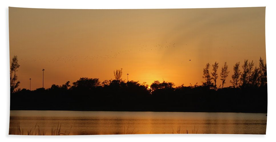 Nature Hand Towel featuring the photograph Bird In The Sunset by Rob Hans