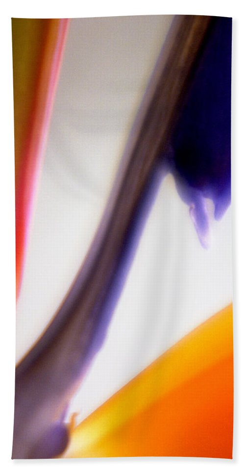 Macro Hand Towel featuring the photograph Bird Of Paradise by Lee Santa