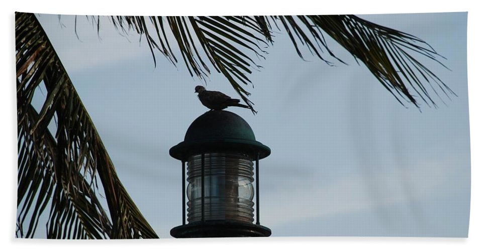 Lamp Post Bath Towel featuring the photograph Bird On A Light by Rob Hans