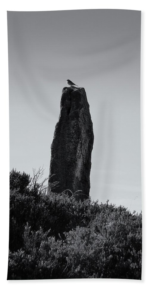 Standing Stone Hand Towel featuring the photograph Bird On A Standing Stone by Philip Openshaw