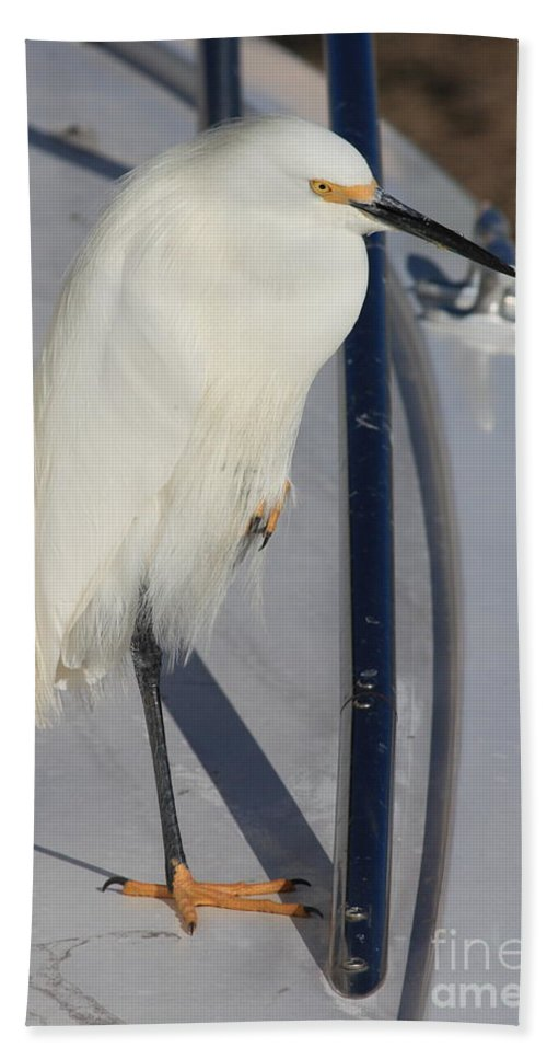 Hand Towel featuring the greeting card Bird On Boat by Carol Groenen