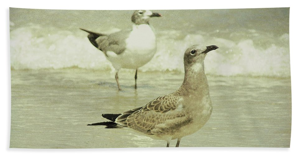 Seagull Bath Sheet featuring the photograph Seabirds View by JAMART Photography